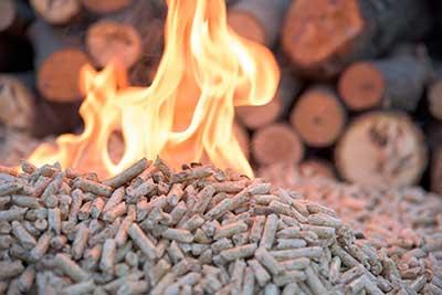 curso de biomasa gratis cursos online