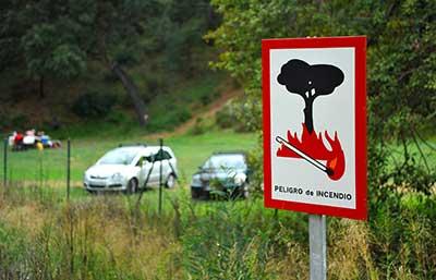 curso de oposiciones guarda forestal gratis cursos online