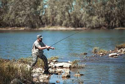 curso de pesca gratis cursos online