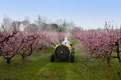 curso de prevencion de riesgos laborales agricultura gratis cursos online