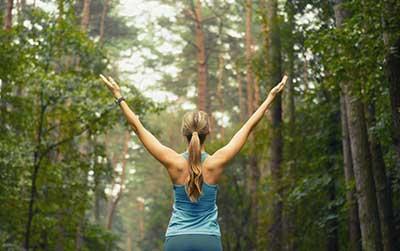 curso de radiestesia gratis cursos online