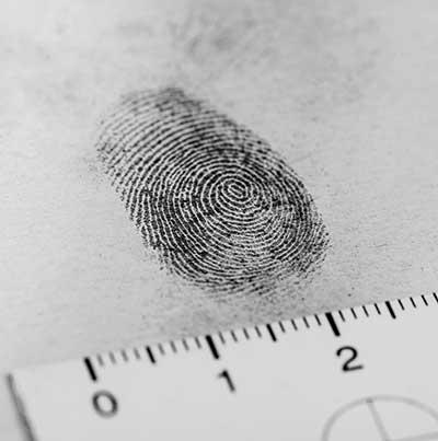 curso de tecnico en criminologia gratis cursos online