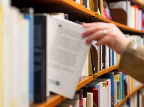 Archivista Catalogacion Libros