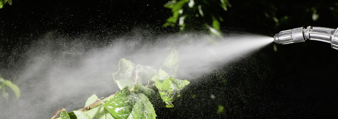 curso fitosanitarios online