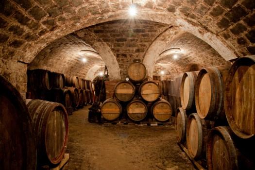 Elaboracion Vinos Licores
