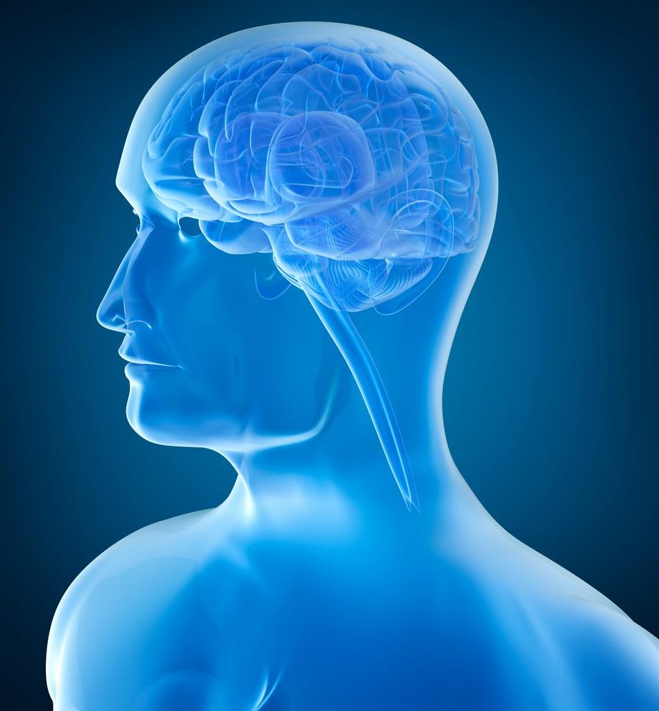 dónde estudiar neuropsicología