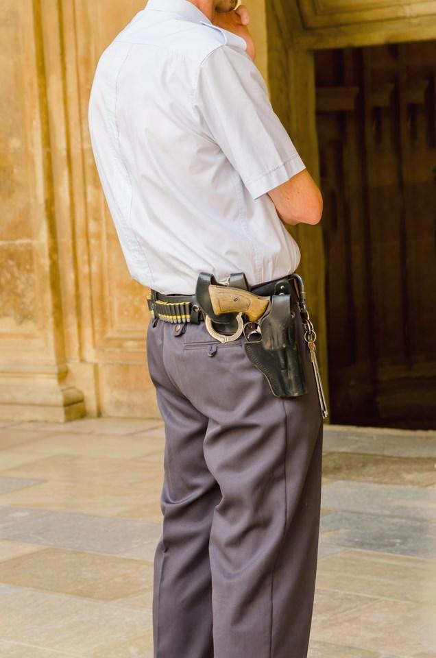 master seguridad privada