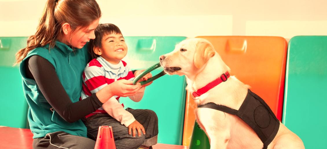 master terapia asistida animales
