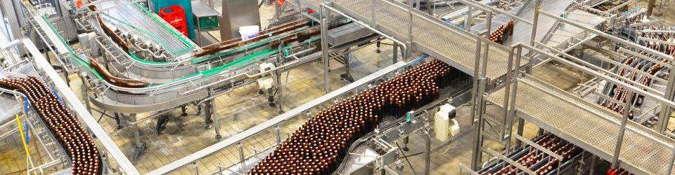 Cursos en Cerveza