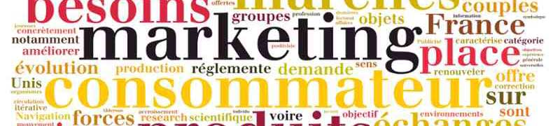 COMM025PO Fundamentos del Plan de Marketing en Internet (Sector: Comercio)
