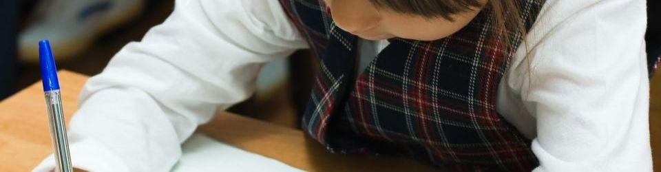 Cursos en Educación Primaria