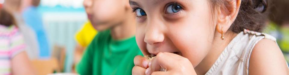 comedores escolares | curso euroinnova