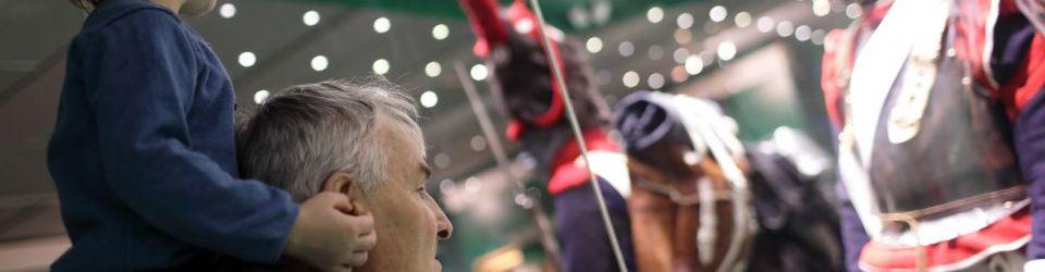 Cursos en Museos