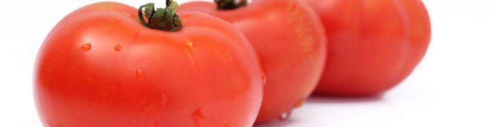 Cursos en nutricion y dietetica