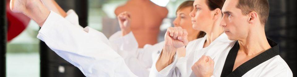 cursos de artes marciales online