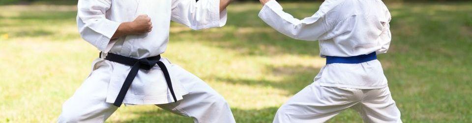 clases de artes marciales online
