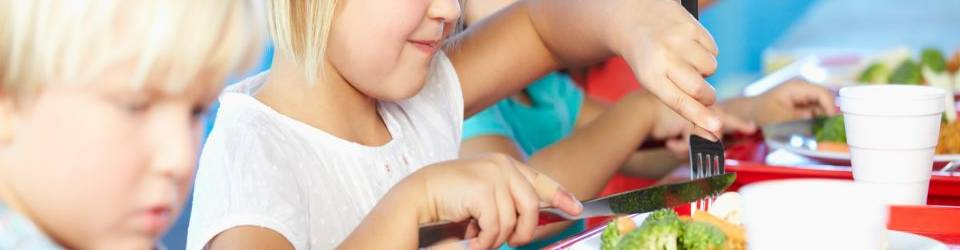 Nutricion infantil tecnico auxiliar jardin infancia for Comedores escolares en colombia
