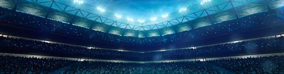 Cursos en Dirección de Instalaciones, Entidades Y Eventos Deportivos