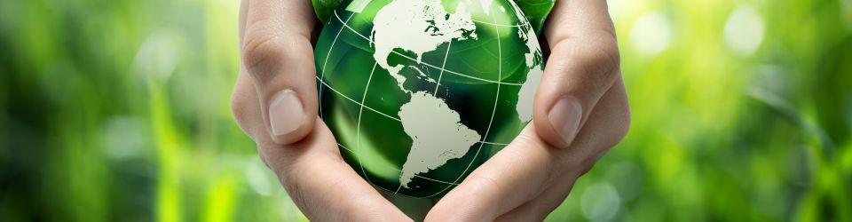 Cursos en Gestión Medioambiental