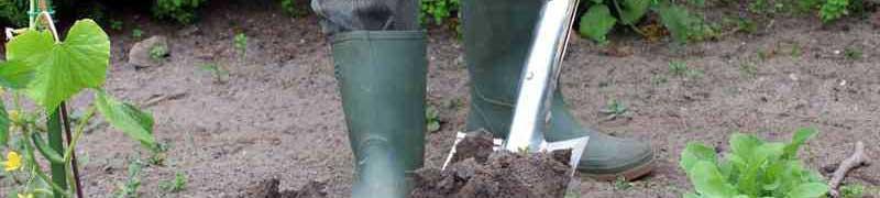 Curso a distancia uf1597 manejo de instalaciones y for Manejo de plantas en viveros