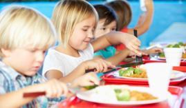 Curso Nutrición Educación Primaria A distancia