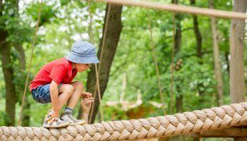 curso de animador sociocultural a distancia