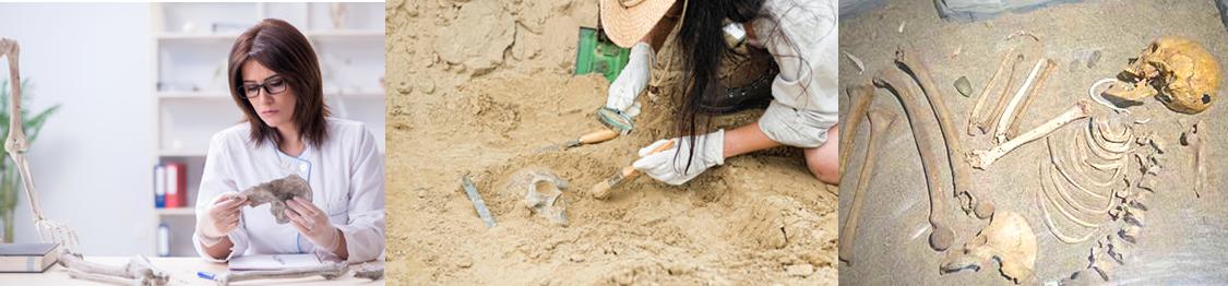 cursos de antropologia forense