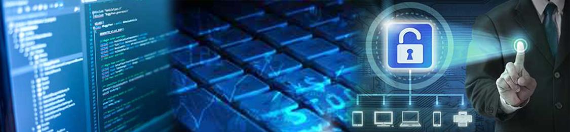 curso de seguridad informatica online