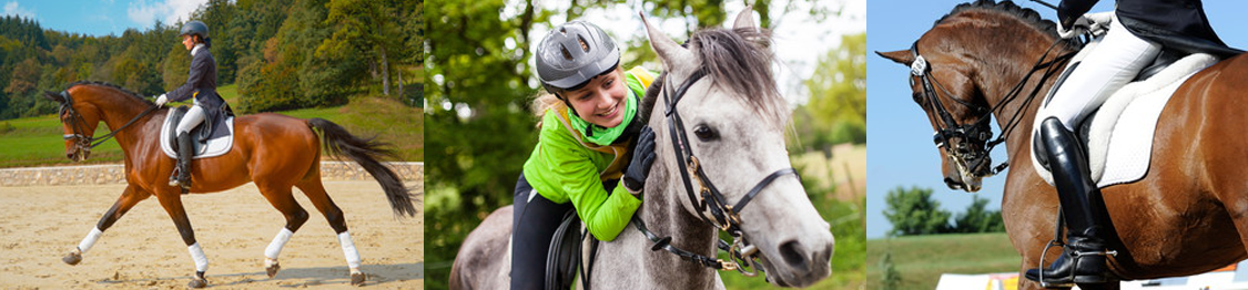 monitor de equitacion