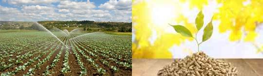 aplicador de productos fitosanitarios