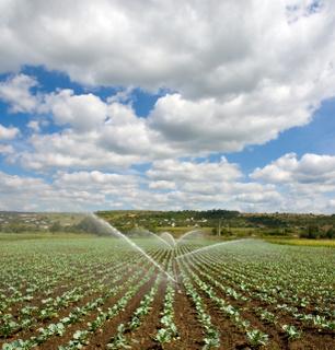 Carné de aplicador de productos fitosanitarios nivel cualificado