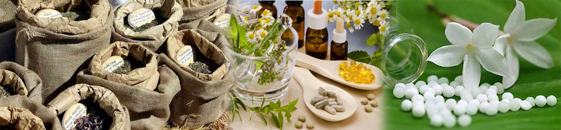 curso de herbodietetica