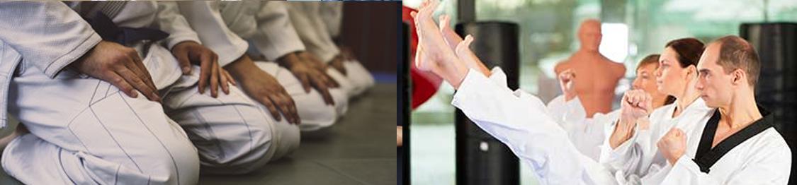curso de tecnicas de karate