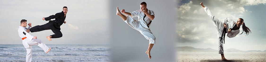 cursos de monitor karate en girona