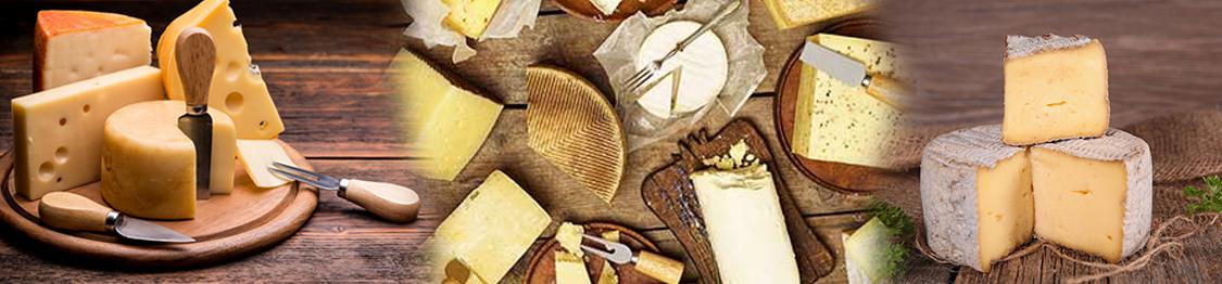 elaboracion del queso