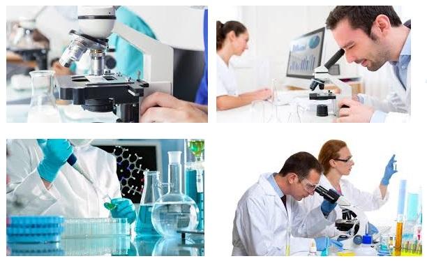 Curso auxiliar de laboratorio