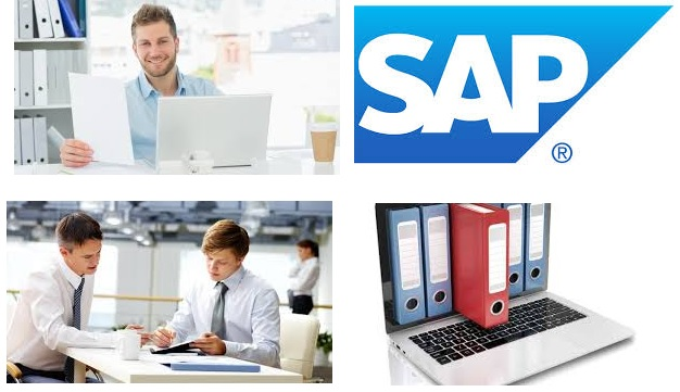 Consultor Implementador de SAP HCM