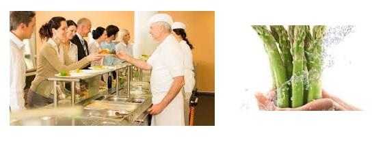 Curso manipulador alimentos online curso homologado online - Carnet de manipulador de alimentos homologado ...