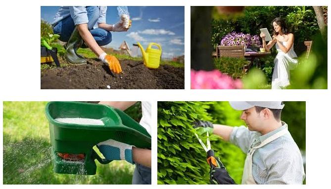 Decoracion jardin Jardineria online